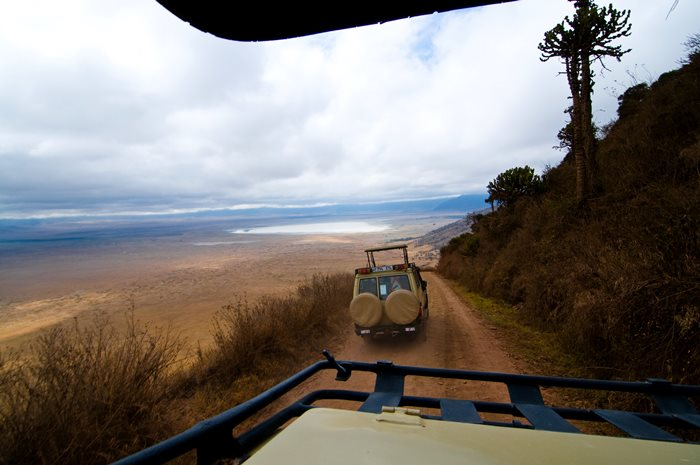Planificar un Safari en Tanzania