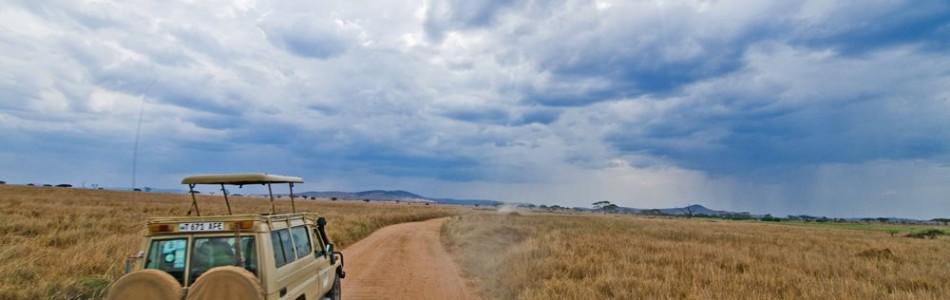 Safaris por zonas de Tanzania