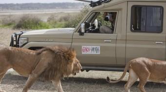 Safari en Tanzania para Fotógrafos – Ndutu